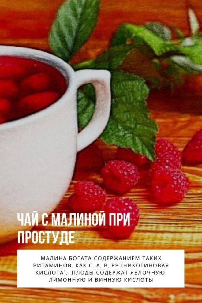 Чай с малиной - лечебные и полезные свойства