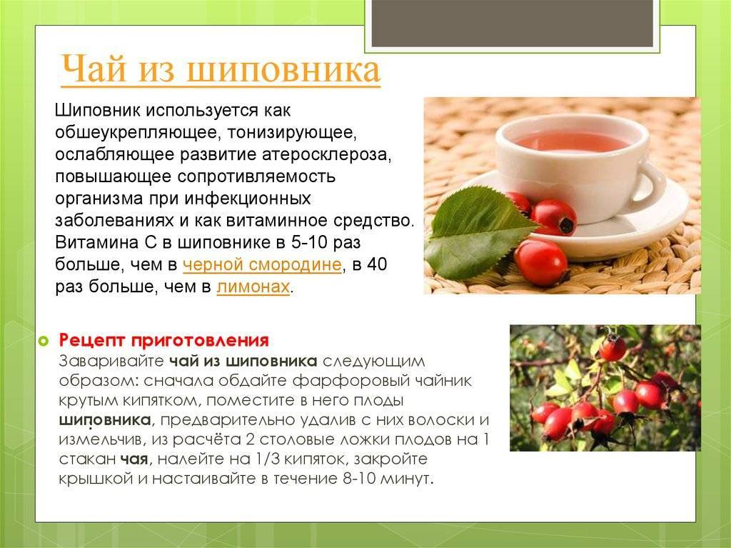 Чаи от простуды: 7 целебных рецептов