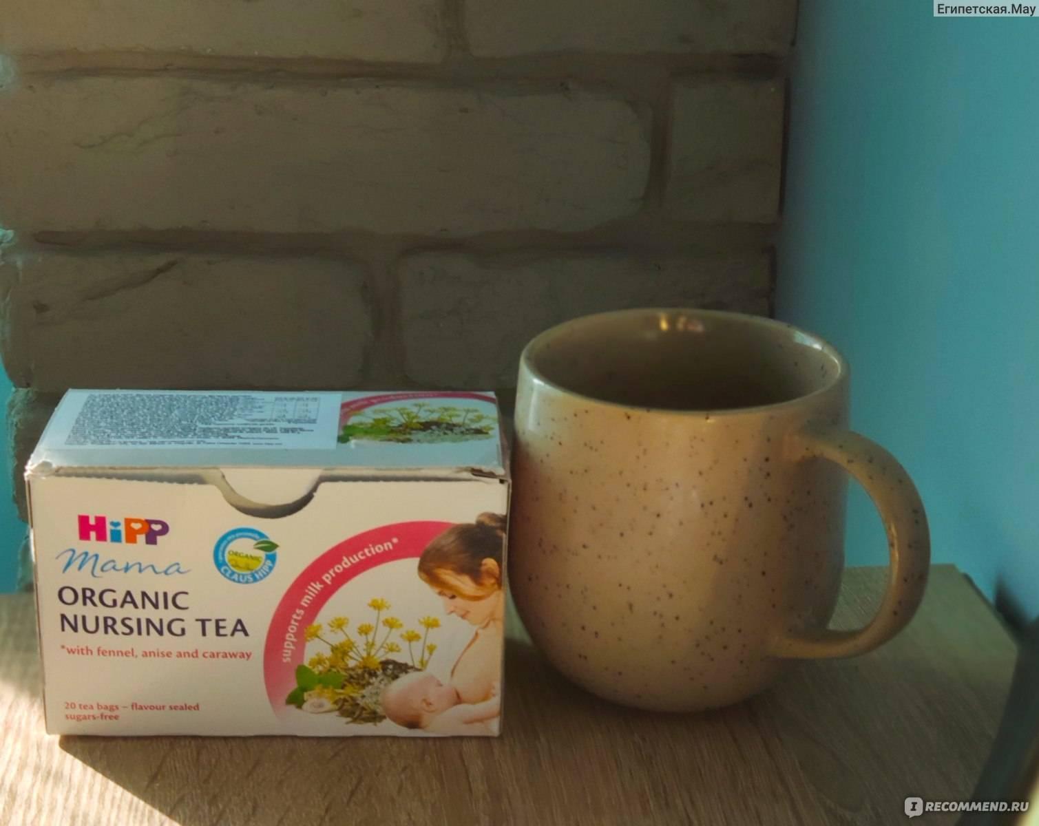 Можно ли пить чай с мятой кормящей маме