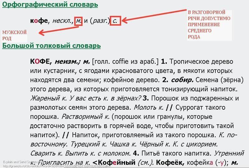Как правильно пишется слово капучино по-русски, какой род существительного, он или оно