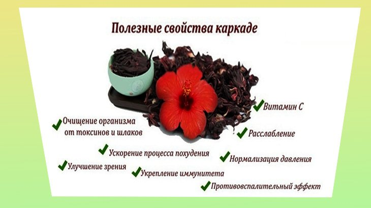 Чай каркаде - полезные свойства и противопоказания, как правильно заваривать и пить