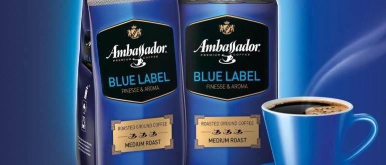 Кто такой амбассадор бренда и почему он нужен вашему бизнесу | trendhero