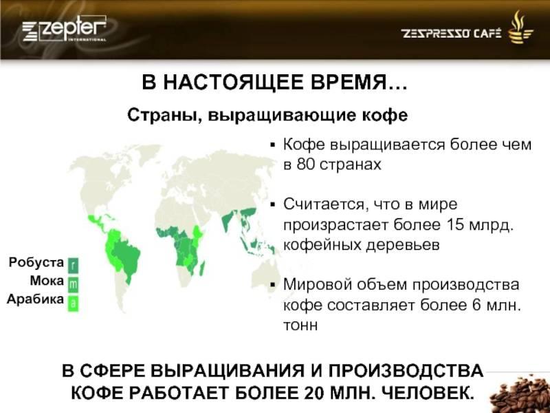 Где выращивают кофе в мире и как оно растет, родина кофе