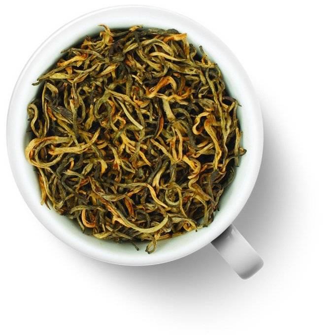 Красный чай: сорта, свойства и особенности происхождения