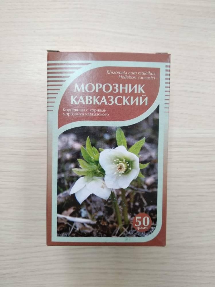 Морозник кавказский: описание, посадка и уход