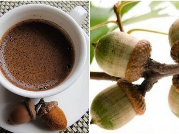 Кофе из желудей – польза и вред, правила приготовления