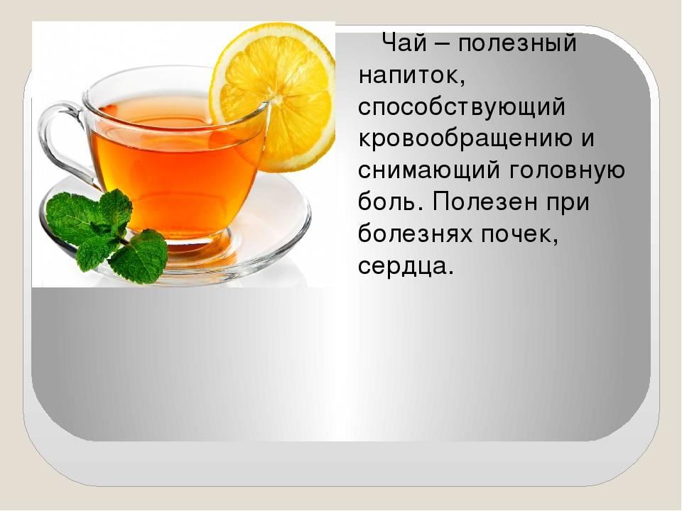 Польза и вред черного чая для организма человека