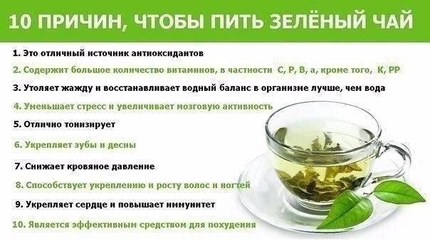 Можно ли пить зеленый чай на ночь?