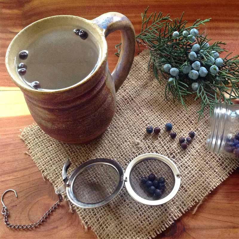 Ягоды можжевельника: лечебные и полезные свойства, противопоказания