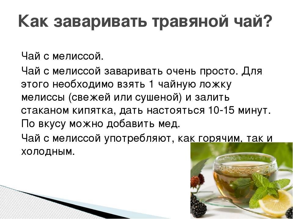 Чай с мелиссой: польза и вред, свойства и противопоказания, как заваривать