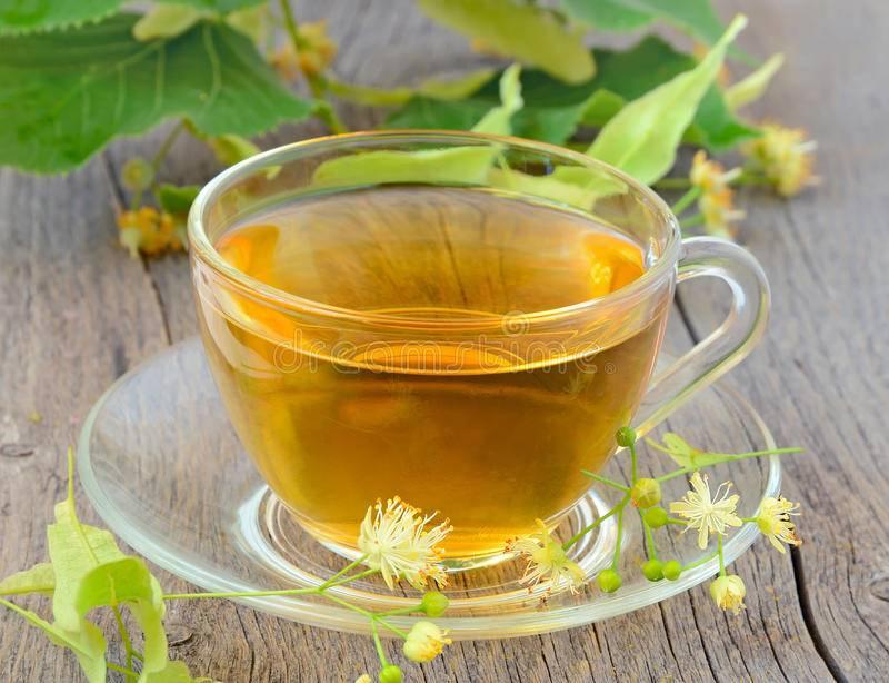 Чай из липы - польза и вред для женщин и мужчин