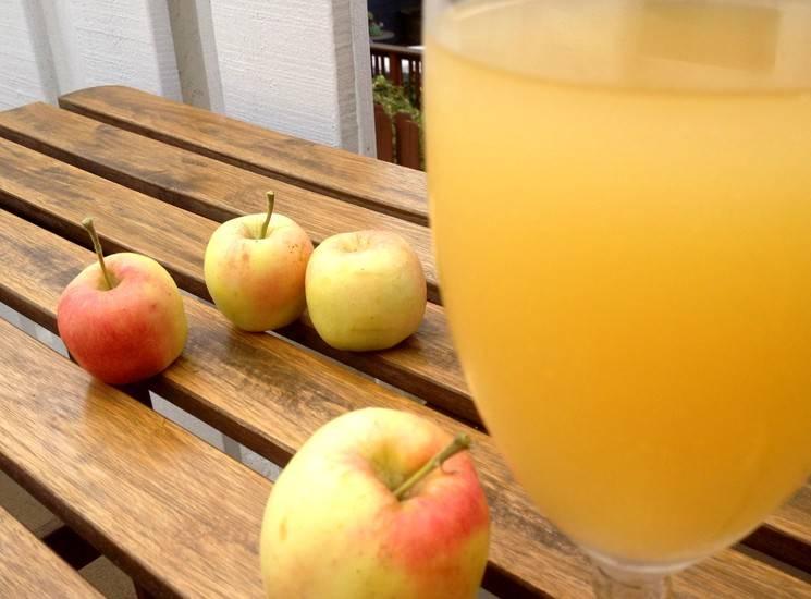 Яблочный квас пошаговый рецепт