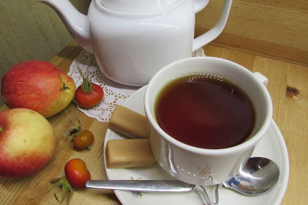 Как готовить чай из шиповника, чем он полезен, кому не подойдет?