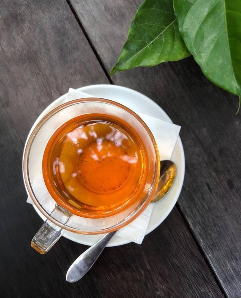 Рецепты чая с абрикосом – новые свойства любимого фрукта