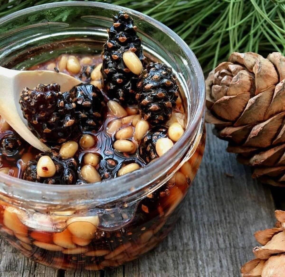 Польза и вред кедрового ореха для мужчин и женщин: как применять