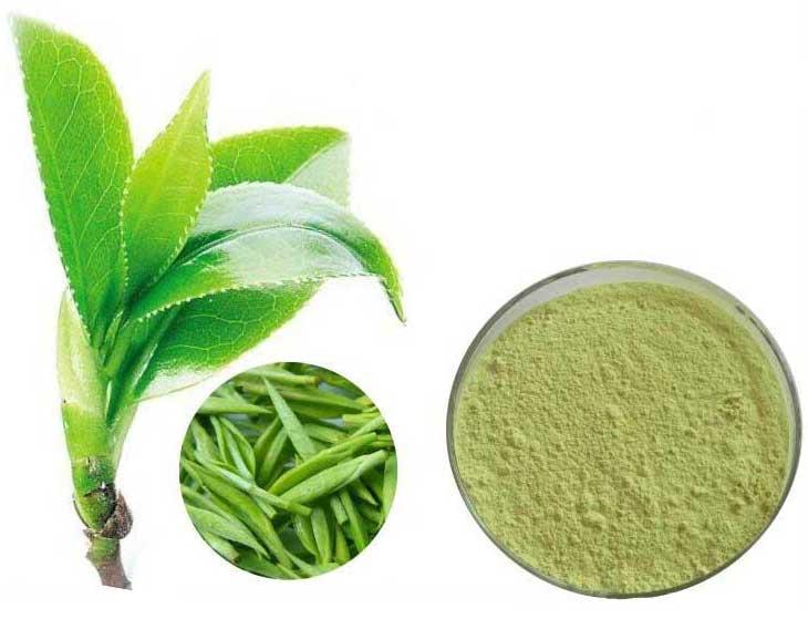 Все о пользе зеленого чая и его вреде для женщин, лучшие рецепты, эффективное применение