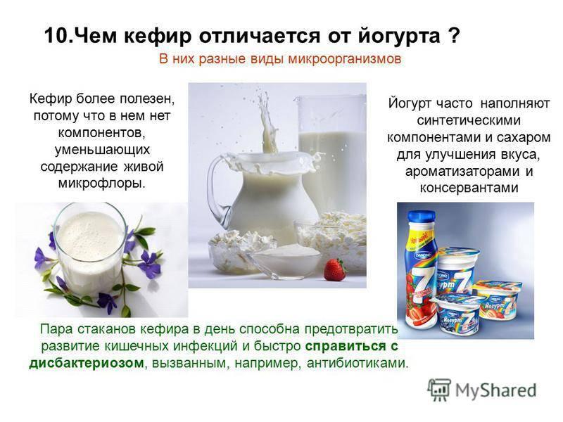 Чем простокваша отличается от кефира и ряженки: польза продуктов