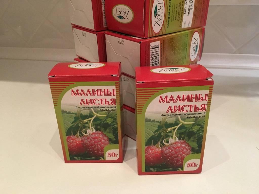 Малина при беременности: можно ли есть ягоду и варенье из нее во время 1, 2 и 3 триместра, кому и почему этого нельзя делать на ранних и поздних сроках?