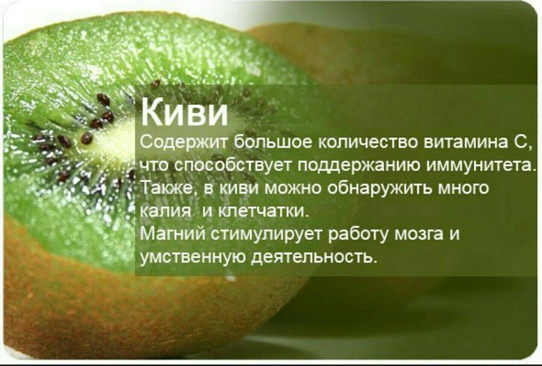 Фрукт киви: польза и вред для здоровья, как принимать плоды
