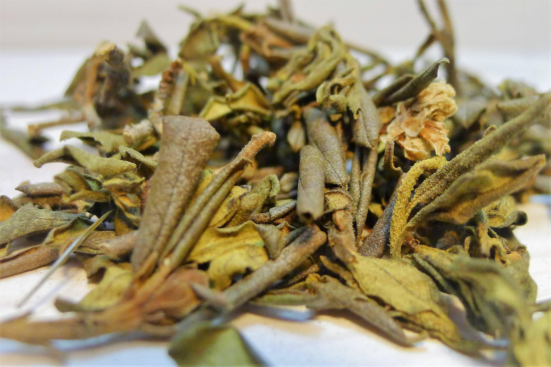 Трава саган дайля свойства применение как заваривать