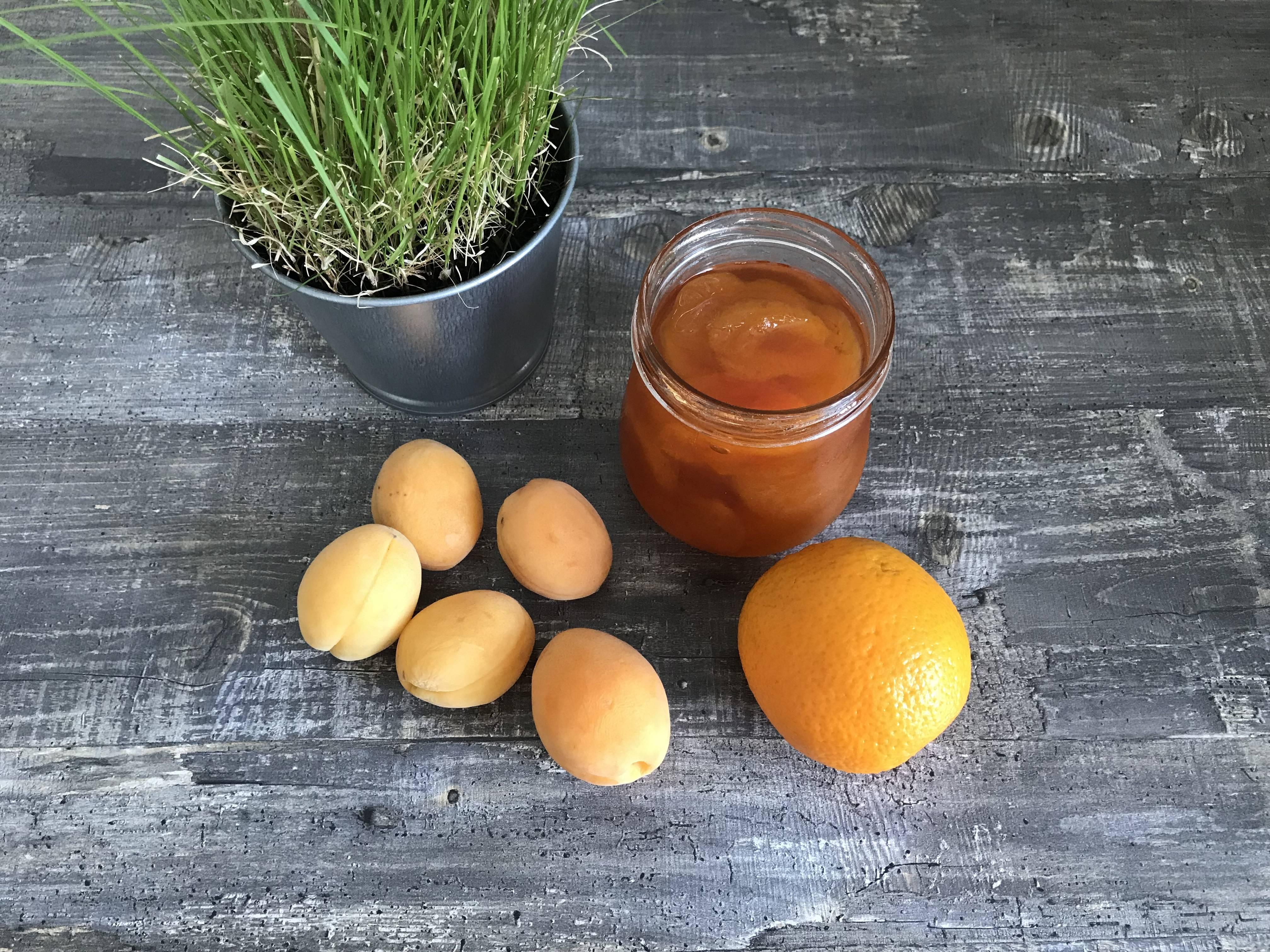 Абрикос: полезные свойства для организма человека и противопоказания, целебное применение плодов и использование косточек