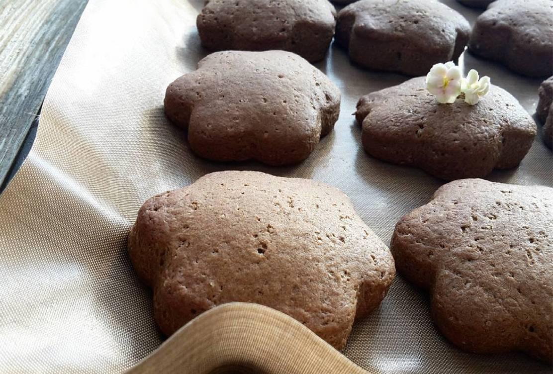 Шоколадное печенье с творожной начинкой и какао