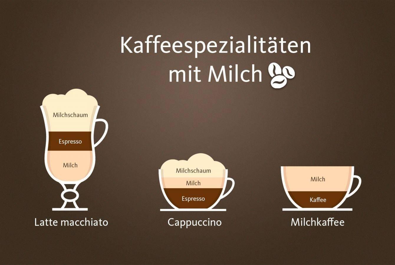 Капучино и латте: отличия в процессе приготовления и рецепты, как правильно готовить кофе