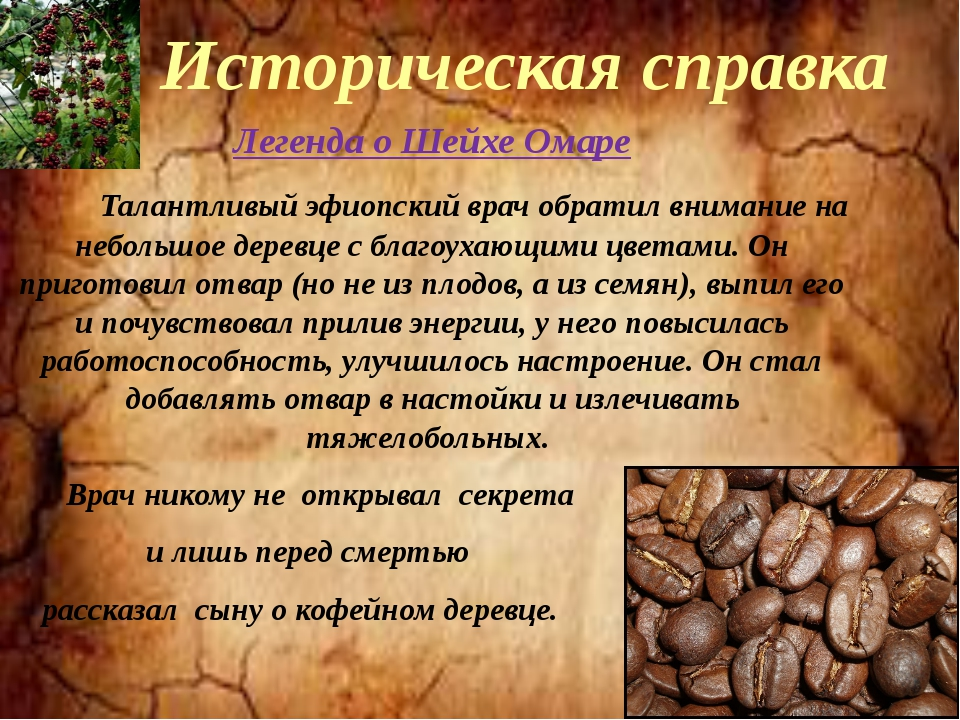 Где находится родина кофейного дерева европа африка азия южная америка | портал о кофе