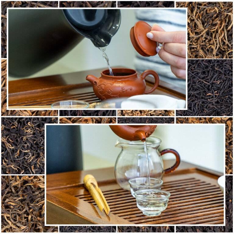 Травяной чай против паразитов: свойства и эффективные рецепты
