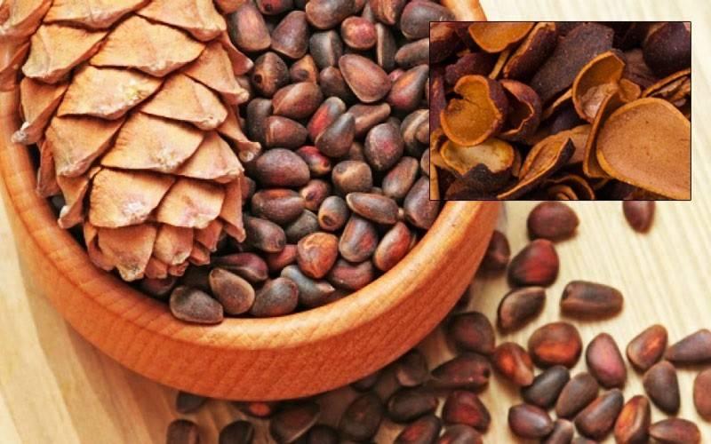Рецепты с кедровыми орехами в лечении народной медицины от сибирских целителей