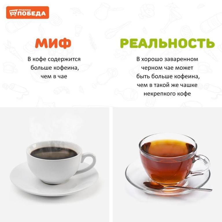 Кофеин в зеленом чае: есть ли он и сколько его содержится