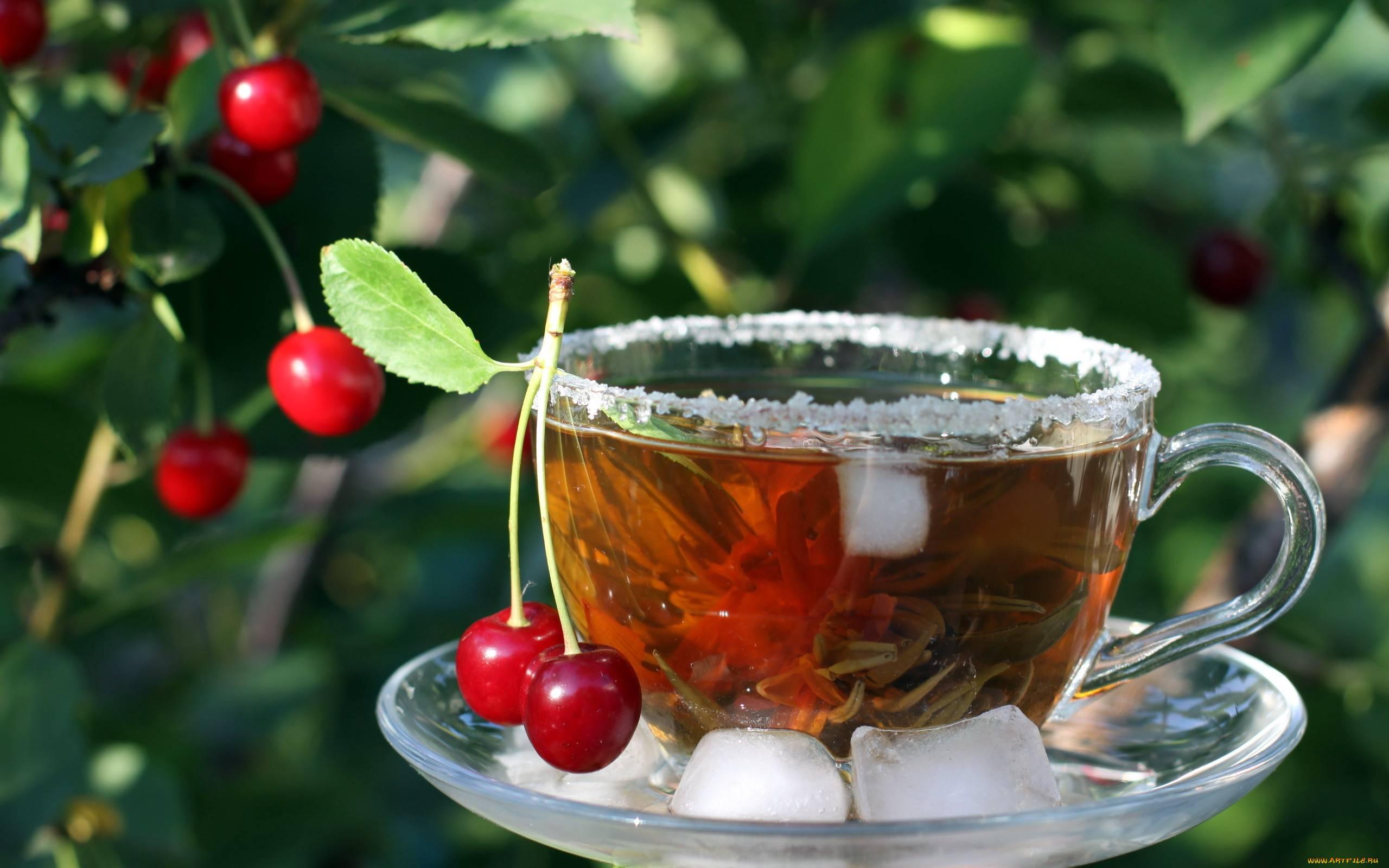 Чай из листьев вишни: когда собирать, как сушить и как сделать чай
