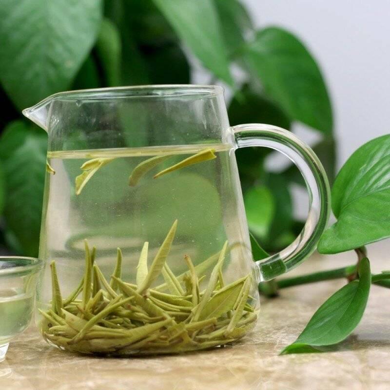 Польза и вред зеленого чая для женщин и мужчин