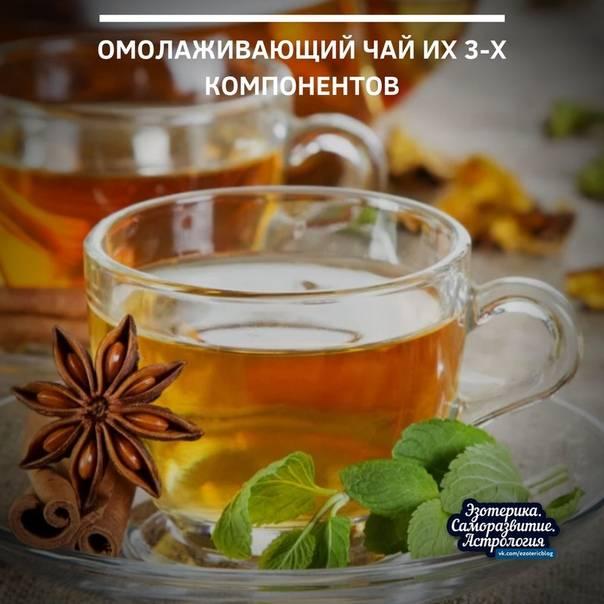 Анисовый чай: полезные свойства, вред и противопоказания, как правильно заваривать и принимать