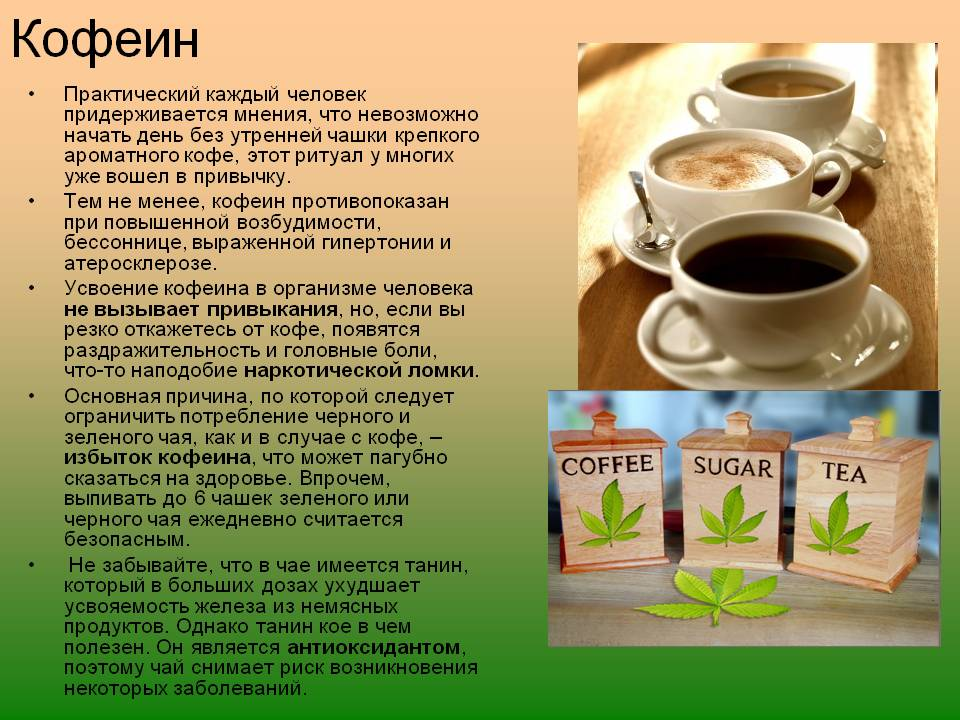Кофеин для похудения! где больше кофеина, и как он помогает худеть