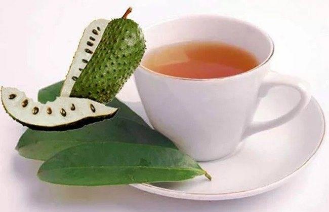 Чай с шалфеем: как пить и заваривать, польза вред