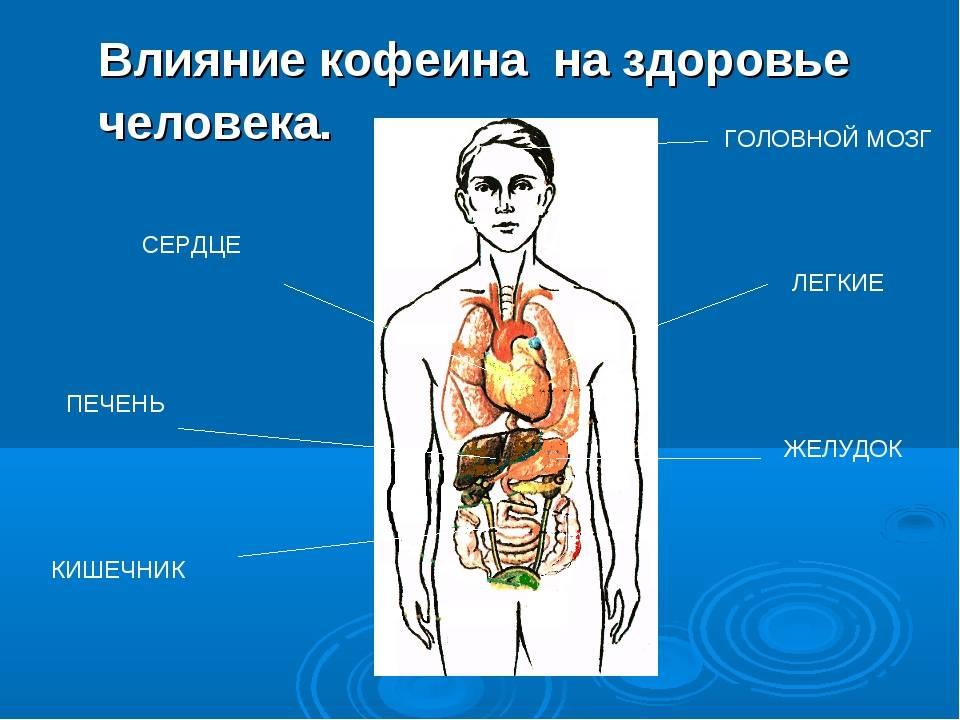 Кофе и сердечно-сосудистые заболевания