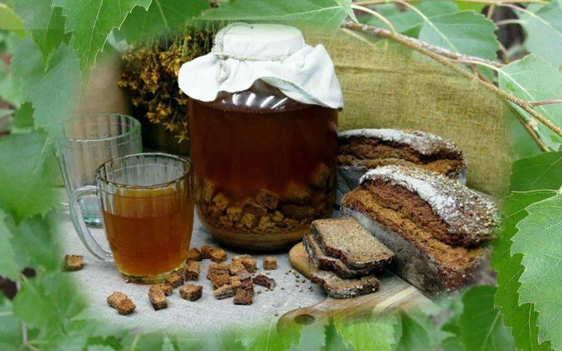 Березовый сок: польза и вред, рецепты приготовления, свойства, противопоказания
