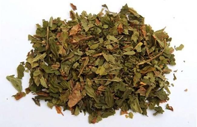 Листья земляники: лечебные свойства и противопоказания, состав, чем полезен чай для здоровья женщин, при беременности »