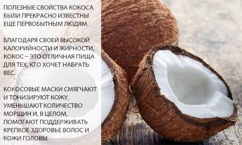 Кофе с кокосовым молоком — польза и вред | zdavnews.ru