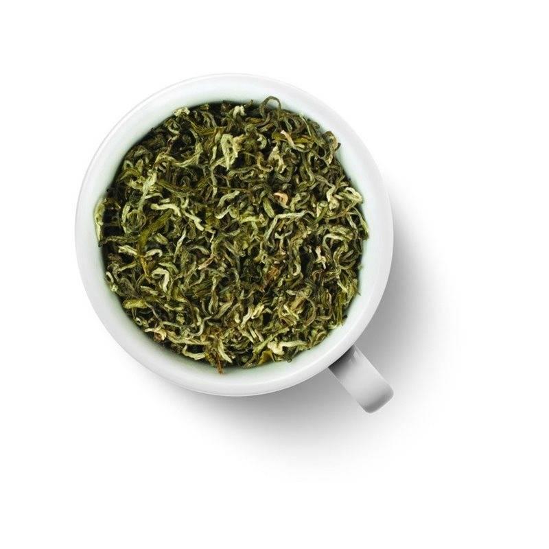 Как правильно заваривать и пить белый чай, чтобы получить оздоровительный эффект. посуда для заваривания чая