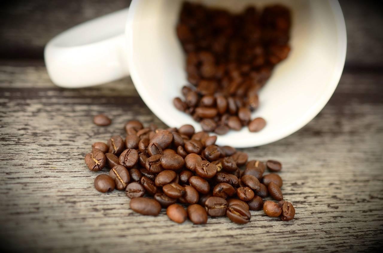 Кофе – польза и вред популярного напитка для мужчин, женщин и детей