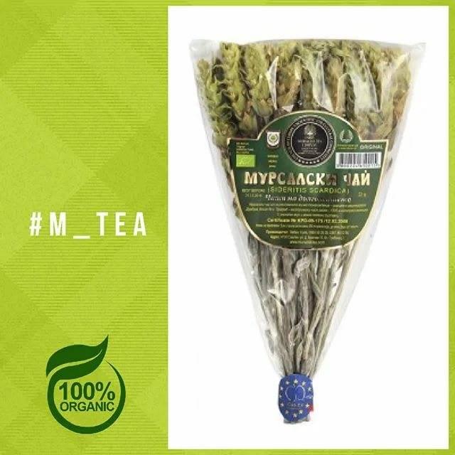 Мурсальский чай: польза и вред
