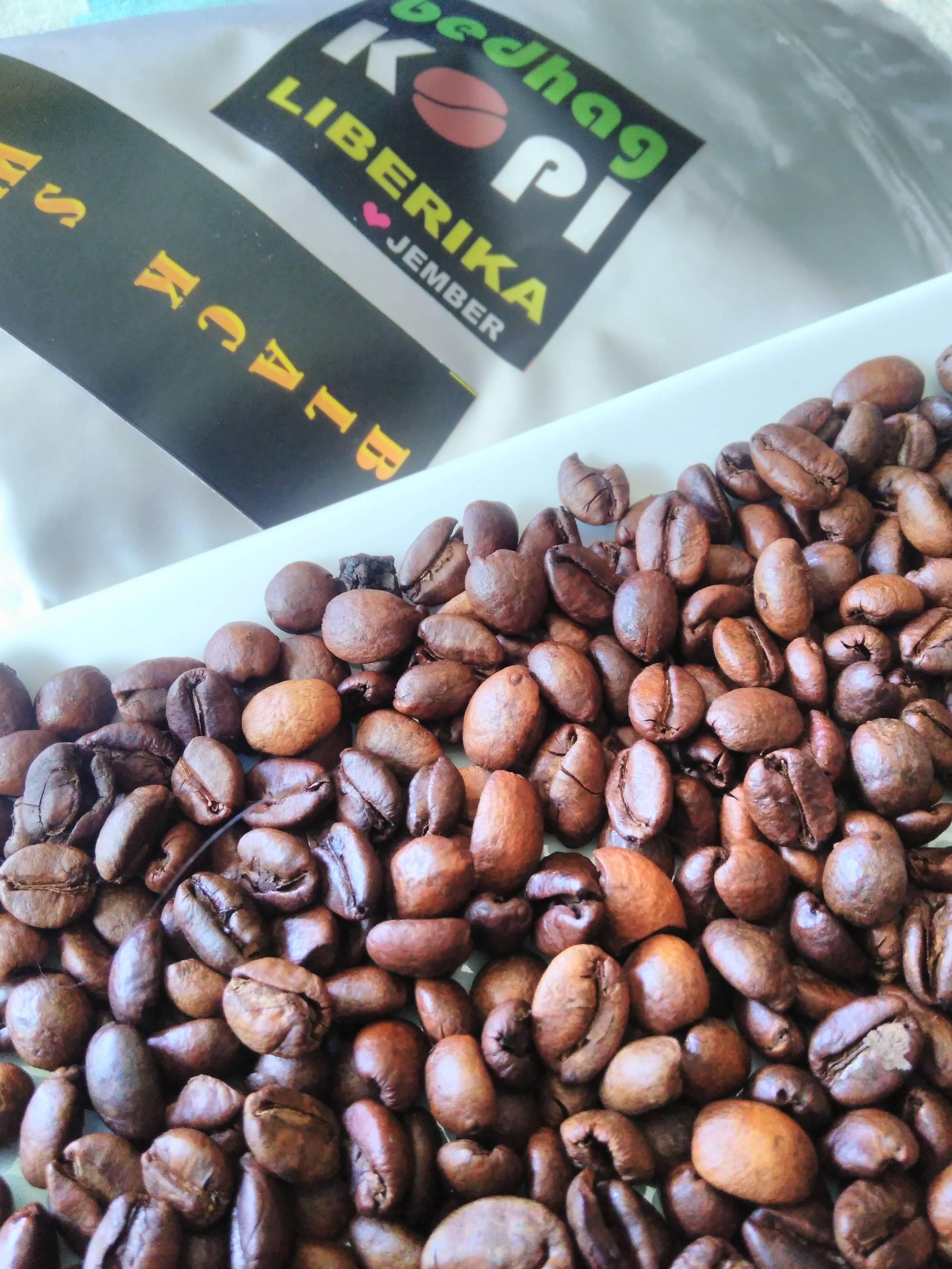 Кофе пакас (pacas) – особенности сорта арабики