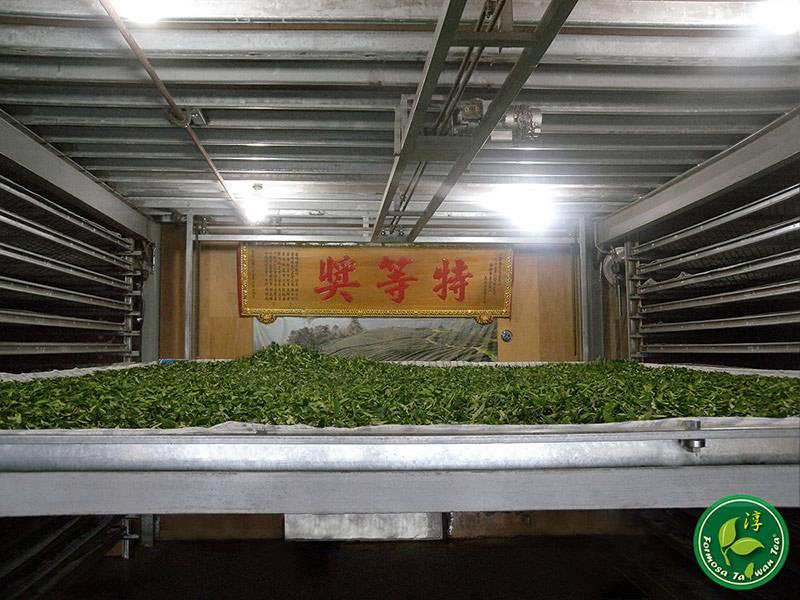 Как выращивают и изготавливают чай. основные виды чая