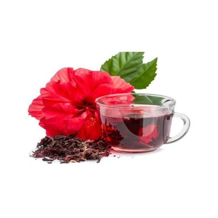 Каркаде – польза и вред суданской розы