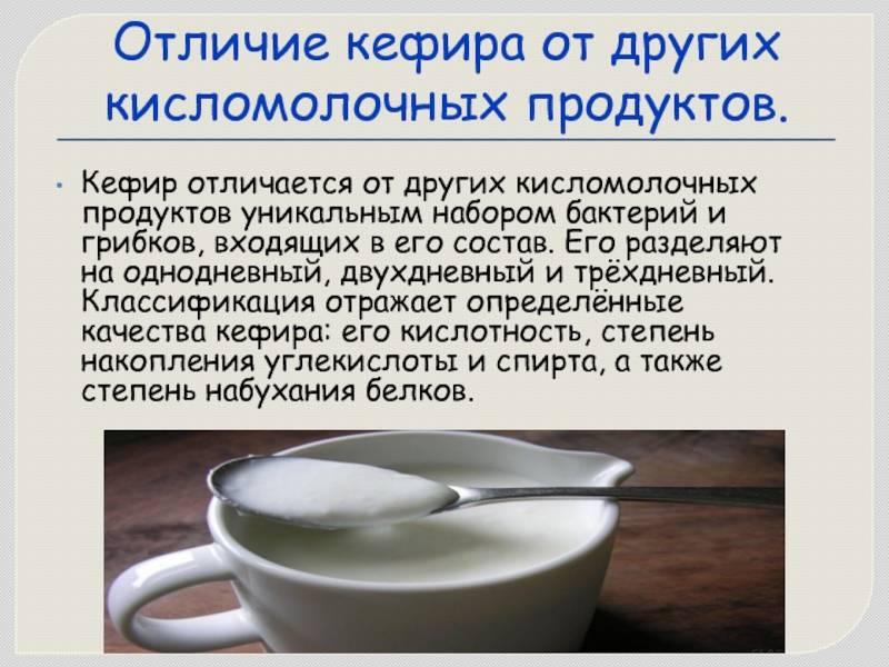 Мечниковская простокваша: польза и вред, рецепт от доктора мечникова, отзывы
