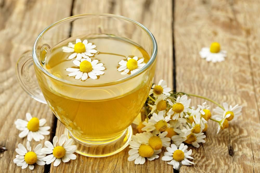 Ромашка от простуды: лечебные свойства, рецепты, противопоказания