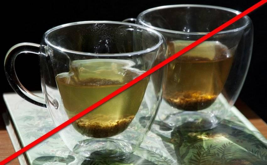 Гречишный чай: полезные свойства и противопоказания