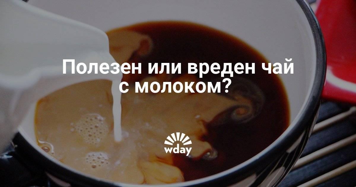 Чай с молоком - польза и вред